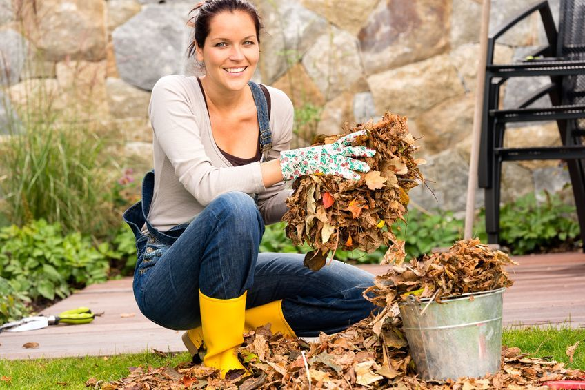 a-happy-woman-putting-autumn-leaves-in-bucket-at-the-backyard