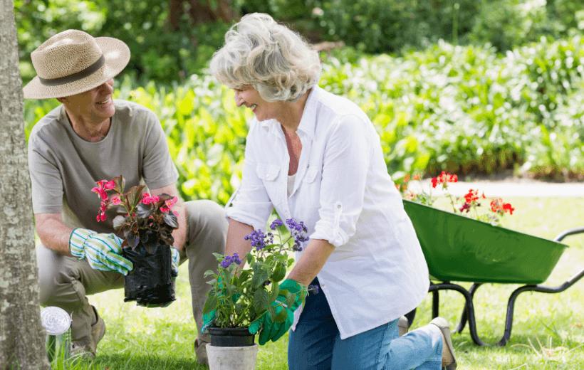 retirementvillagegardening